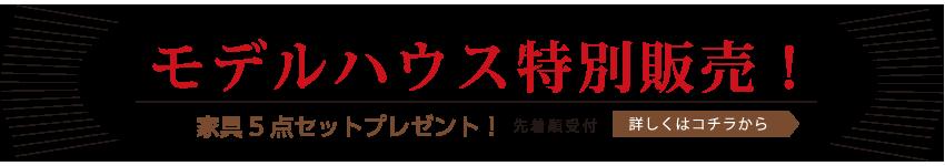 ナチュリエ境町長井戸モデルハウス特別販売